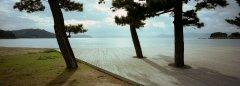 1-OK-Japan-9-87691.jpg