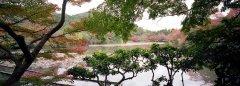 4-OK-Japan-Kyotogarten-.jpg